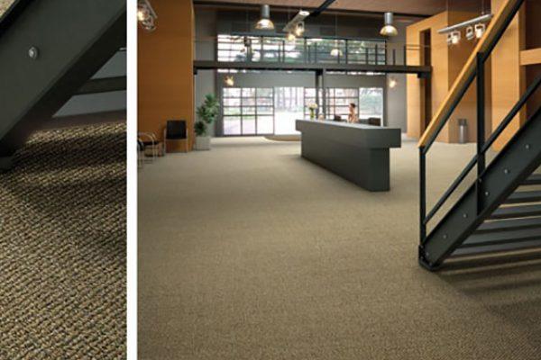 carpete 003