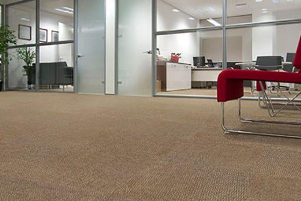 carpete 007
