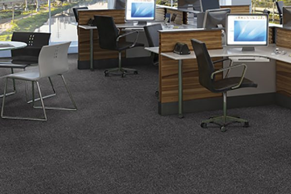 carpete 008