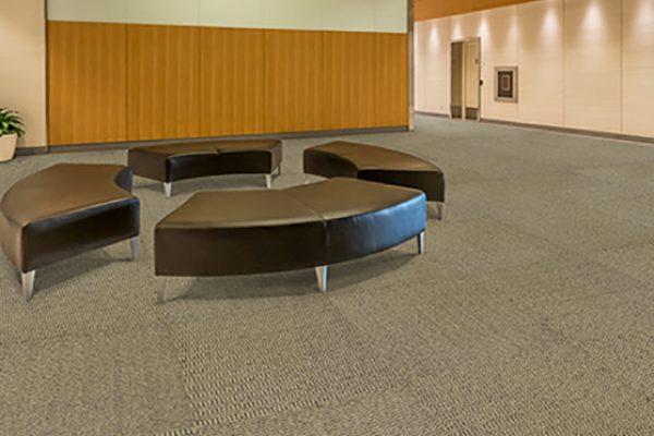 carpete 009
